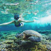 Australia Summer 2