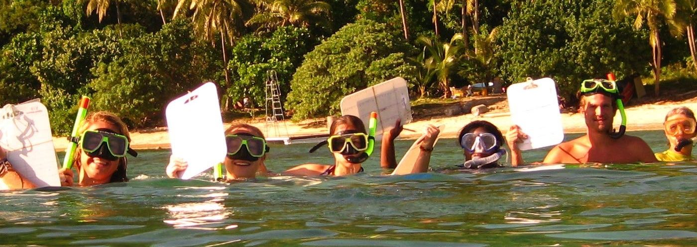 Snorkelling projects (9)